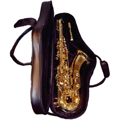 Tenor sax bag