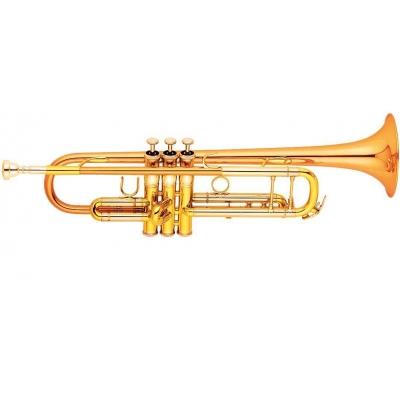 Trompet superbe